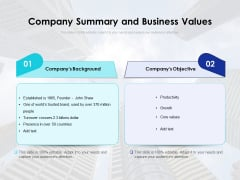 Company Summary And Business Values Ppt PowerPoint Presentation Gallery Format PDF