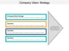 Company Vision Strategy Ppt PowerPoint Presentation Visual Aids Show Cpb