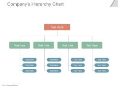 Companys Hierarchy Chart Ppt PowerPoint Presentation Portfolio