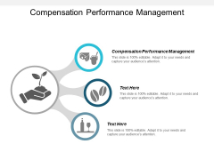 Compensation Performance Management Ppt PowerPoint Presentation Icon Design Ideas