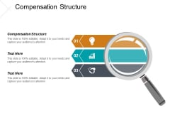 Compensation Structure Ppt PowerPoint Presentation Styles Graphics Example Cpb