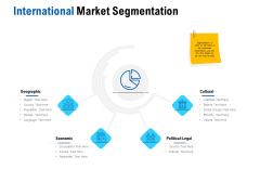 Competition In Market International Market Segmentation Ppt Professional Graphics PDF
