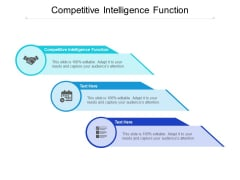 Competitive Intelligence Function Ppt PowerPoint Presentation Slides Demonstration Cpb