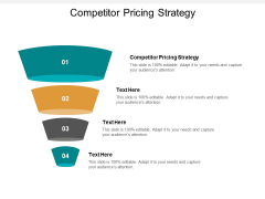 Competitor Pricing Strategy Ppt PowerPoint Presentation Visual Aids Styles Cpb