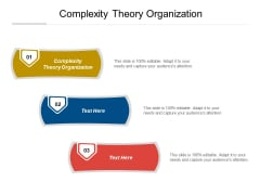 Complexity Theory Organization Ppt PowerPoint Presentation Examples Cpb Pdf