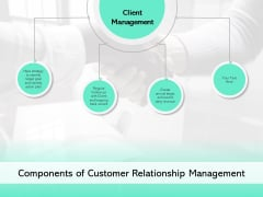 Components Of Customer Relationship Management Ppt PowerPoint Presentation Styles Examples