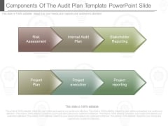 Components Of The Audit Plan Template Powerpoint Slide