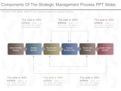 Components Of The Strategic Management Process Ppt Slides