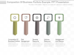 Composition Of Business Portfolio Example Ppt Presentation