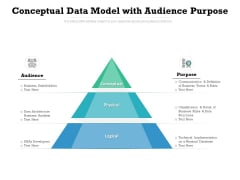 Conceptual Data Model With Audience Purpose Ppt PowerPoint Presentation Infographics Format