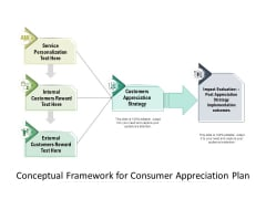 Conceptual Framework For Consumer Appreciation Plan Ppt PowerPoint Presentation Gallery Picture PDF