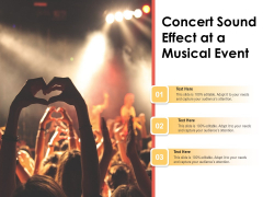 Concert Sound Effect At A Musical Event Ppt PowerPoint Presentation Pictures Design Ideas PDF