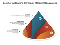 Cone Layout Showing Techniques Of Market Data Analysis Ppt PowerPoint Presentation Summary Infographics PDF