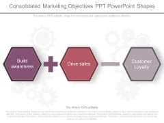 Consolidated Marketing Objectives Ppt Powerpoint Shapes