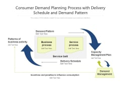 Consumer Demand Planning Process With Delivery Schedule And Demand Pattern Ppt PowerPoint Presentation Icon Inspiration PDF