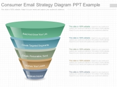 Consumer Email Strategy Diagram Ppt Example