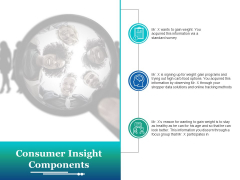 Consumer Insight Components Ppt PowerPoint Presentation Infographic Template Example Topics
