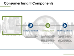 Consumer Insight Components Ppt PowerPoint Presentation Show Model