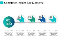 Consumer Insight Key Elements Ppt PowerPoint Presentation Pictures Outfit