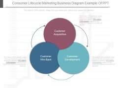 Consumer Lifecycle Marketing Business Diagram Example Of Ppt