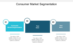 Consumer Market Segmentation Ppt PowerPoint Presentation Guide Cpb