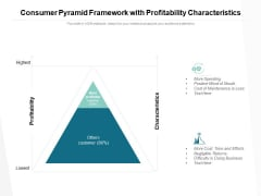 Consumer Pyramid Framework With Profitability Characteristics Ppt PowerPoint Presentation Slides Deck
