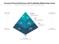Consumer Pyramid Structure With Profitability Relationship Levels Ppt PowerPoint Presentation Show Graphics