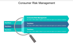 Consumer Risk Management Ppt PowerPoint Presentation File Graphic Tips Cpb