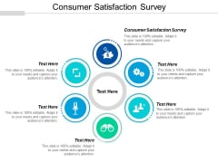 Consumer Satisfaction Survey Ppt PowerPoint Presentation Styles Guide Cpb
