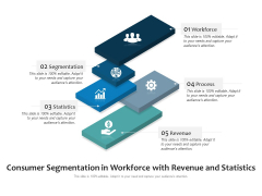 Consumer Segmentation In Workforce With Revenue And Statistics Ppt PowerPoint Presentation Icon Example File PDF