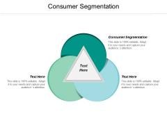 Consumer Segmentation Ppt PowerPoint Presentation Summary Guidelines Cpb