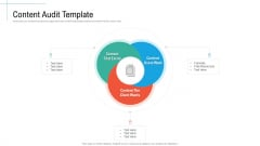 Content Audit Template Initiatives And Process Of Content Marketing For Acquiring New Users Professional PDF