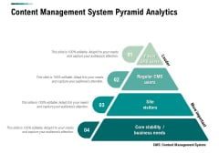 Content Management System Pyramid Analytics Ppt PowerPoint Presentation Summary Elements