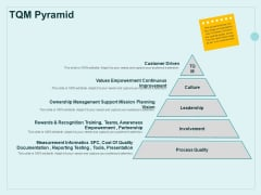Continual Improvement Model TQM Pyramid Ppt Icon Example File PDF
