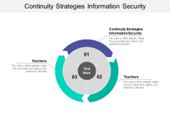 Continuity Strategies Information Security Ppt PowerPoint Presentation Gallery Structure Cpb