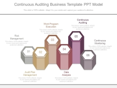 Continuous Auditing Business Template Ppt Model