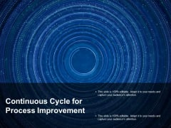 Continuous Cycle For Process Improvement Ppt Powerpoint Presentation Professional Example