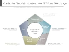 Continuous Financial Innovation Loop Ppt Powerpoint Images