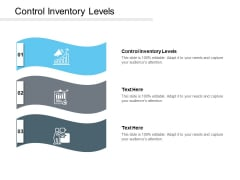 Control Inventory Levels Ppt PowerPoint Presentation Slides Structure Cpb