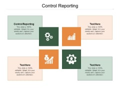 Control Reporting Ppt PowerPoint Presentation Infographic Template Guide Cpb Pdf