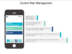Control Risk Management Ppt PowerPoint Presentation Styles Tips Cpb