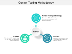 Control Testing Methodology Ppt PowerPoint Presentation Outline Gallery Cpb