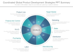 Coordinated Global Product Development Strategies Ppt Summary
