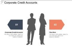 Corporate Credit Accounts Ppt PowerPoint Presentation Samples Cpb