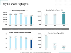 Corporate Execution And Financial Liability Report Key Financial Highlights Infographics PDF