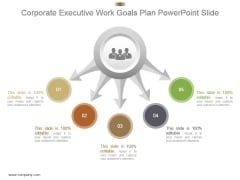 Corporate Executive Work Goals Plan Powerpoint Slide