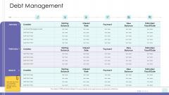 Corporate Governance Debt Management Guidelines PDF