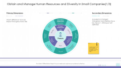 Corporate Governance Obtain And Manage Human Resources And Diversity In Small Companies Icon Themes PDF