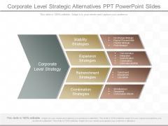 Corporate Level Strategic Alternatives Ppt Powerpoint Slides