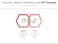 Corporate Objective Marketing Audit Ppt Example